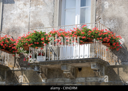 Italy, Sicily, Novara di Sicilia, balcony with red geraniums in window boxes - Stock Photo