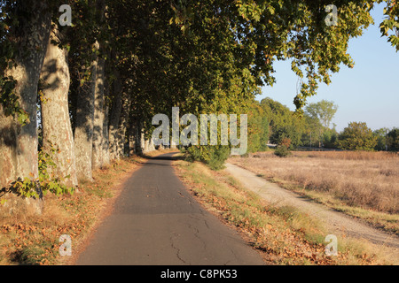 Lonely road along the Canal du Midi in southern France - Stock Photo