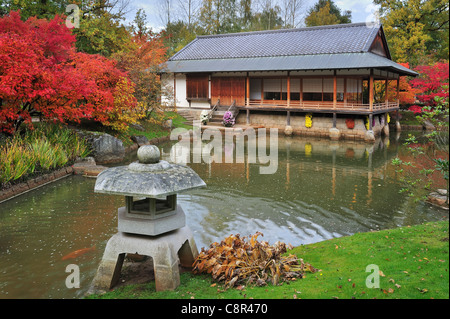 Stone lantern and traditional pavilion / tea house in Japanese garden with tree foliage in red autumn colours, Hasselt, Belgium