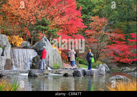Tourists visiting Japanese garden with tree foliage in red autumn colours in the city Hasselt, Belgium - Stock Photo