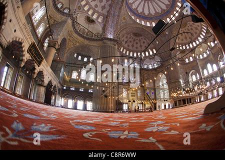 Interior of Blue Mosque, Istanbul, Turkey Moschee - Stock Photo
