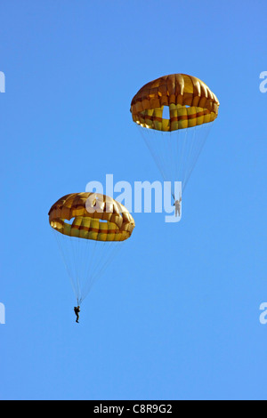 Paratroopers of Japan Ground Self Defense Force - Stock Photo