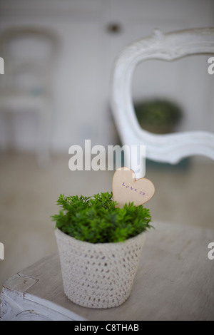 Heart In A Flower Pot - Stock Photo