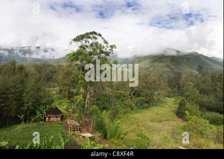 Agriculture and habitation in valley in Western Highlands near Mt Hagen Papua New Guinea - Stock Photo