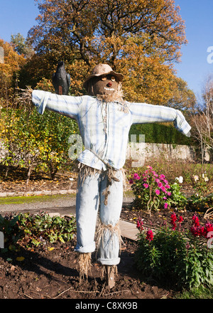 A straw stuffed scarecrow placed as a feature in a garden, Autumn, Britain.