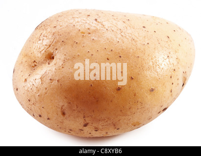 Potato on a white background. - Stock Photo