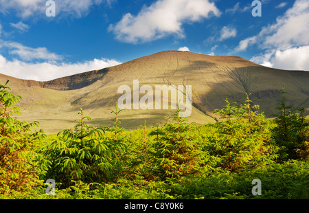 Galtymore Mountain, the highest mountain in the Galty Mountains range, Tipperary, Ireland, from the Glen of Aherlow - Stock Photo