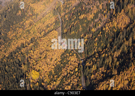 TRAIN DU MONTENVERS (aerial view). Red cog railway train linking Chamonix Mont-Blanc to Mer de Glace. Larches in - Stock Photo