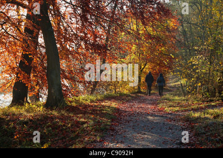 A couple walks along the River Wharfe on a beautiful autumn morning near Barden in Wharfedale, Yorkshire - Stock Photo