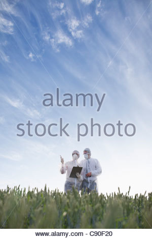Scientists wearing protective gear in field - Stock Photo
