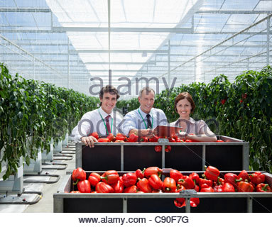Workers in greenhouse standing with produce - Stock Photo