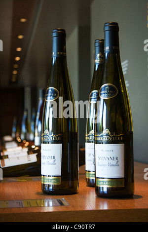 Route du Vin Ribeauville Caves Wine tasting - Stock Photo