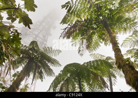 Netherlands, Saba Island, Dutch Caribbean. Mount Scenery National Park. Highest point in the Netherlands. Communications - Stock Photo