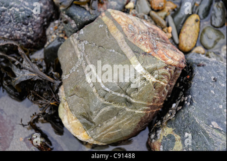 coloured rock stone on Criccieth beach gwynedd north wales uk - Stock Photo