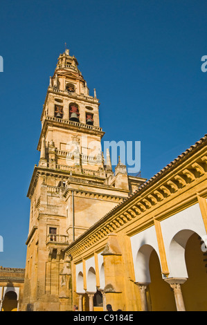 The Mezquita is a large complex in the city of Cordoba originally a mosque in the 8th century and now the Catedral - Stock Photo