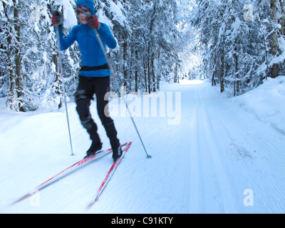 Woman nordic skate skiing through trees on the Chester Creek trail, Anchorage, Southcentral Alaska, Winter - Stock Photo