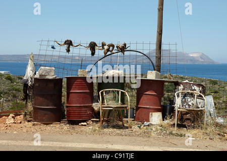 Goats skulls displayed on fence and oil drums on the coastal road of Cape Souinon. - Stock Photo