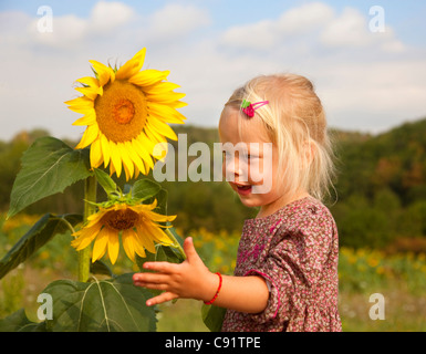 Girl playing with sunflowers in field - Stock Photo