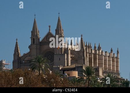 La Seu cathedral. Palma is a major city and port on Majorca. Le Seu Cathedral was founded in 1229 but construction - Stock Photo