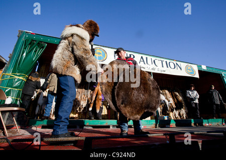The fur auction during 2011 Fur Rondy festival in downtown Anchorage, Southcentral Alaska, Winter - Stock Photo