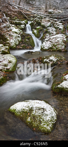Light dusting of the first snowfall on Falls Creek, Turnagain Arm, Chugach State Park, Southcentral Alaska, Winter - Stock Photo