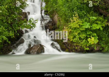 A cascading waterfall flows into Granite Creek, Turnagain Pass, Chugach National Forest, Summer - Stock Photo