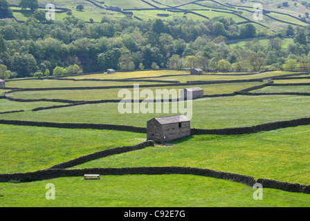 Gunnerside Bottoms in the valley of the River Swale has well-preserved traditional stone-built field dry stone walls - Stock Photo