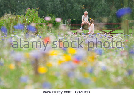 Boy and girl at fence in wildflower field - Stock Photo