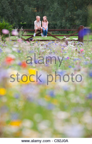 Boy and girl sitting on fence in wildflower field - Stock Photo