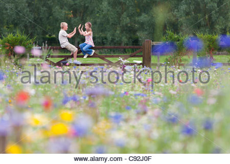 Boy and girl playing clapping game on fence in wildflower field - Stock Photo