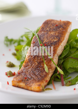 spicy coated Salmon steak - Stock Photo