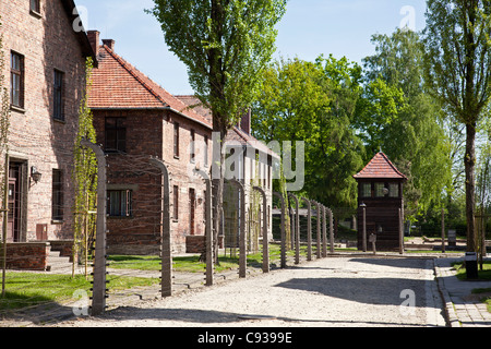 Poland, Oswiecim, Auschwitz I.  The prison blocks now contain exhibitions of the history of Auschwitz. - Stock Photo