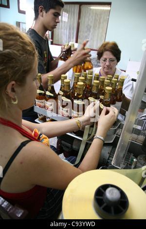 Workers stick labels at the bottles at the rum factory Fabrica de Bebidas Casa Garay in Pinar del Rio, Cuba. - Stock Photo