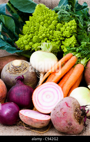 Mixed vegetables: turnips, carrots, swede, beetroots, red onions, potatoes and Roman cauliflower - Stock Photo