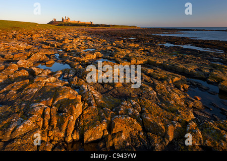 Dunstanburgh Castle with rocks below, in the early morning light, Northumberland - Stock Photo