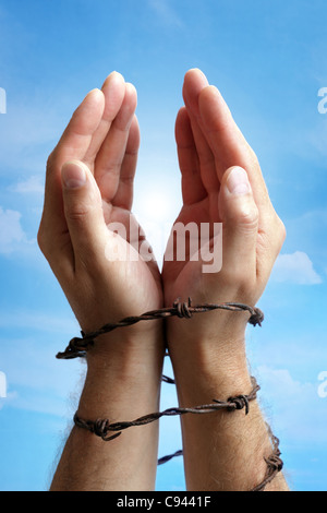 Hands tied with barbed wire - Stock Photo