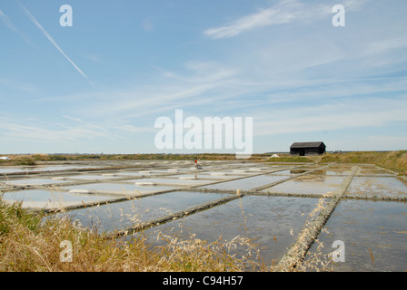 Marais Salants, salt marshes, near Batz-sur-Mer on the Guérande peninsula in the department Loire-Atlantique, France - Stock Photo