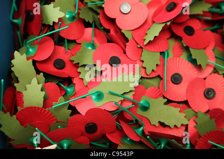 Poppies sold to mark Remembrance Sunday in Britain - Stock Photo