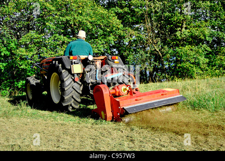 Small farm tractor bush hogging on a grass field in Trentino Alto Adige. Italy - Stock Photo