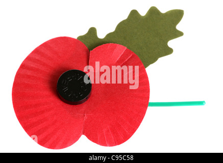 Remembrance day poppy on white background - Stock Photo
