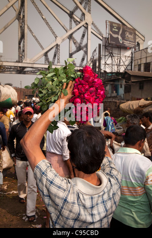 India, West Bengal, Kolkata, Mullik Ghat, flower market, man carrying bunch of red roses above his head - Stock Photo