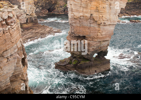 Yesnaby Castle, a sea stack at Yesnaby on Orkney Mainland west coast, Scotland, UK. - Stock Photo