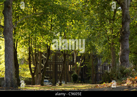 St Pancras Gardens with the buildings of St Pancras (University College) Hospital in the background - Stock Photo