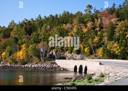 Autumn color and early morning light create vibrant scenes in Acadia National Park. - Stock Photo