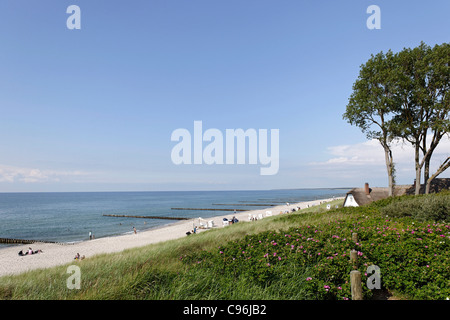 Thatched-roof house on the beach of Ahrenshoop, Fischland-Darss-Zingst peninsula, Baltic Sea, Germany
