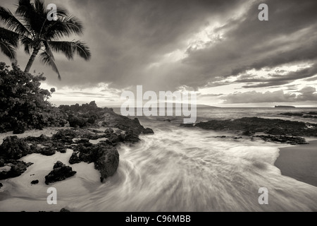 Sunset clouds and wave with palm trees. Maui, Hawaii. - Stock Photo