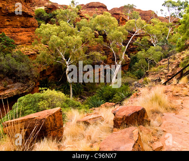 King's Canyon, Central Australia, Northern Territory - Stock Photo
