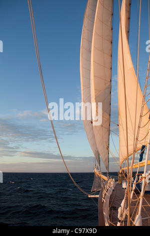 Bow of sailing cruiseship Star Flyer (Star Clippers Cruises), Pacific Ocean, near Costa Rica, Central America, America - Stock Photo