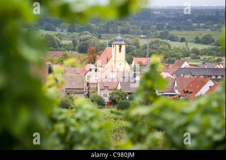 Wine village of Ungstein near Bad Duerkheim in the Pfalz wine area, Rheinland-Pfalz, Germany - Stock Photo