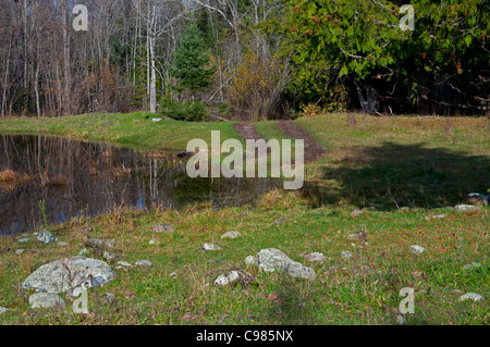 Flooded pasture land. - Stock Photo